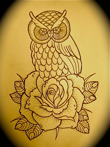 Owl And Rose Sketch 2010 Flickr Photo Sharing