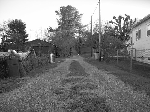 Alley Behind Our House
