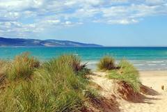 Great Ocean Road (Victoria)