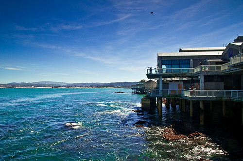 Monterey from life of John Steinbeck