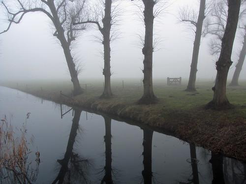 trees mist reflection netherlands fog bomen gate nederland hek reflectie heemskerk chateaumarquette