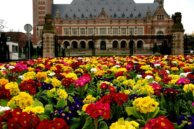flowers at the peace palace