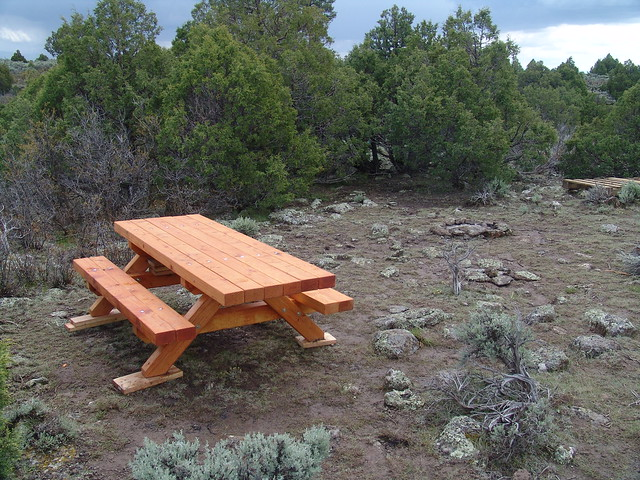 A REAL Picnic Table