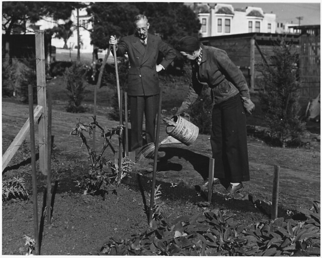 Frequent Watering of the Victory Garden Is Necessary During the Early Stages of Growth. ca. 02/1943