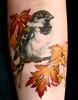 Maple Sparrow