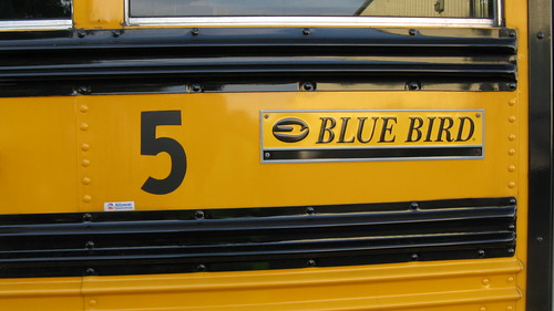 A Bluebird school bus up close. Glenview Illinois. May 2010. by Eddie from Chicago