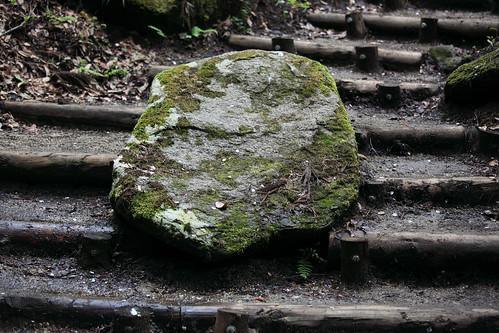 Rock / 岩(いわ)