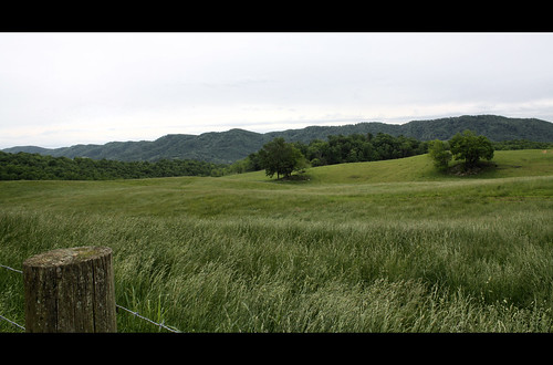 mountain field grass landscape virginia leecounty