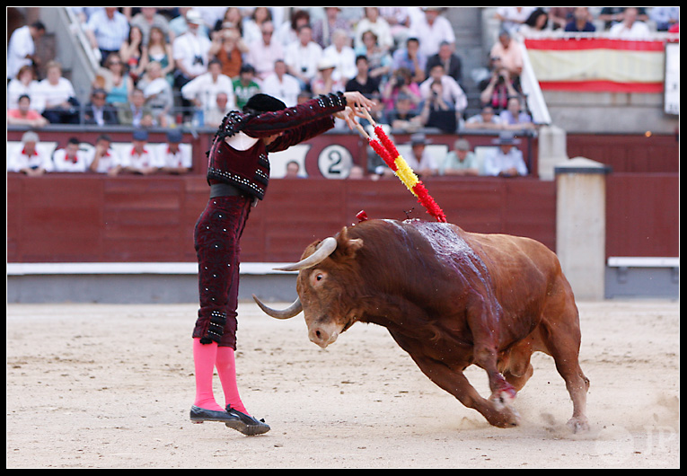 Curro Robles