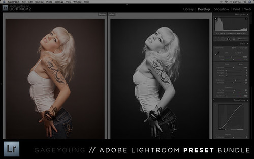 Adobe Lightroom Presets by Gage Young
