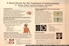 a novel device for the treatment of hydrocephalus