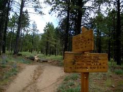 Weatherford trail area flagstaff, az
