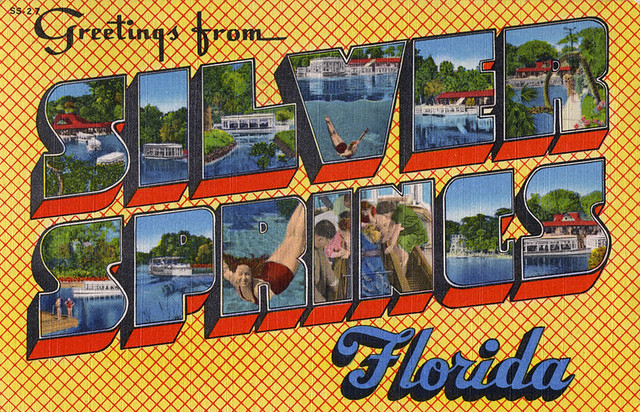 Greetings from Silver Springs, Florida - Large Letter Postcard