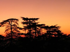 Sunset at Shimla