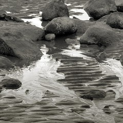 Sand Ripples and Water Rivulets