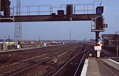 Signals Ashford copy