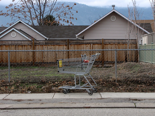 Shopping Cart with Paper Cup