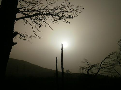 walking desert hiking athens climbing dust attica deadnature penteli ελλάδα πεντέλη σκόνη 20100220 olympusfe4000x920x925 σκόνηαπότηναφρική νομόσαττικήσ αφρικάνικησκόνη