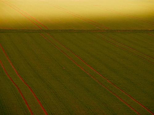 sunlight field landscape geometry line diagonal explore twocolors greenred