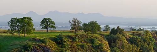 trees panorama spring oak view panoramic tablemountain sutterbuttes sacramentovalleynortherncaliforniacalifornia