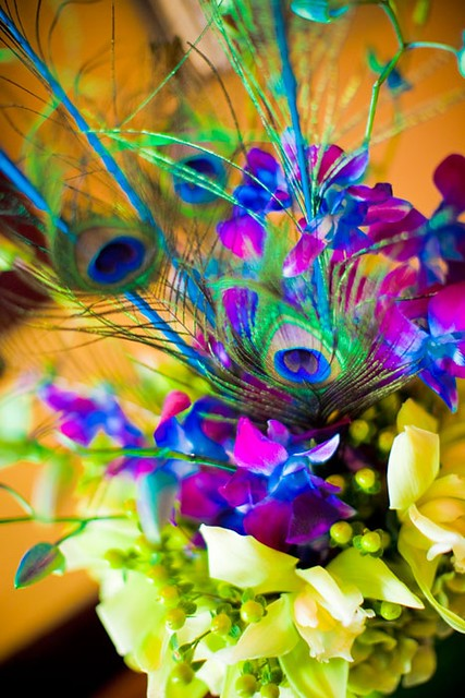 Peacock feather centerpiece flickr photo sharing