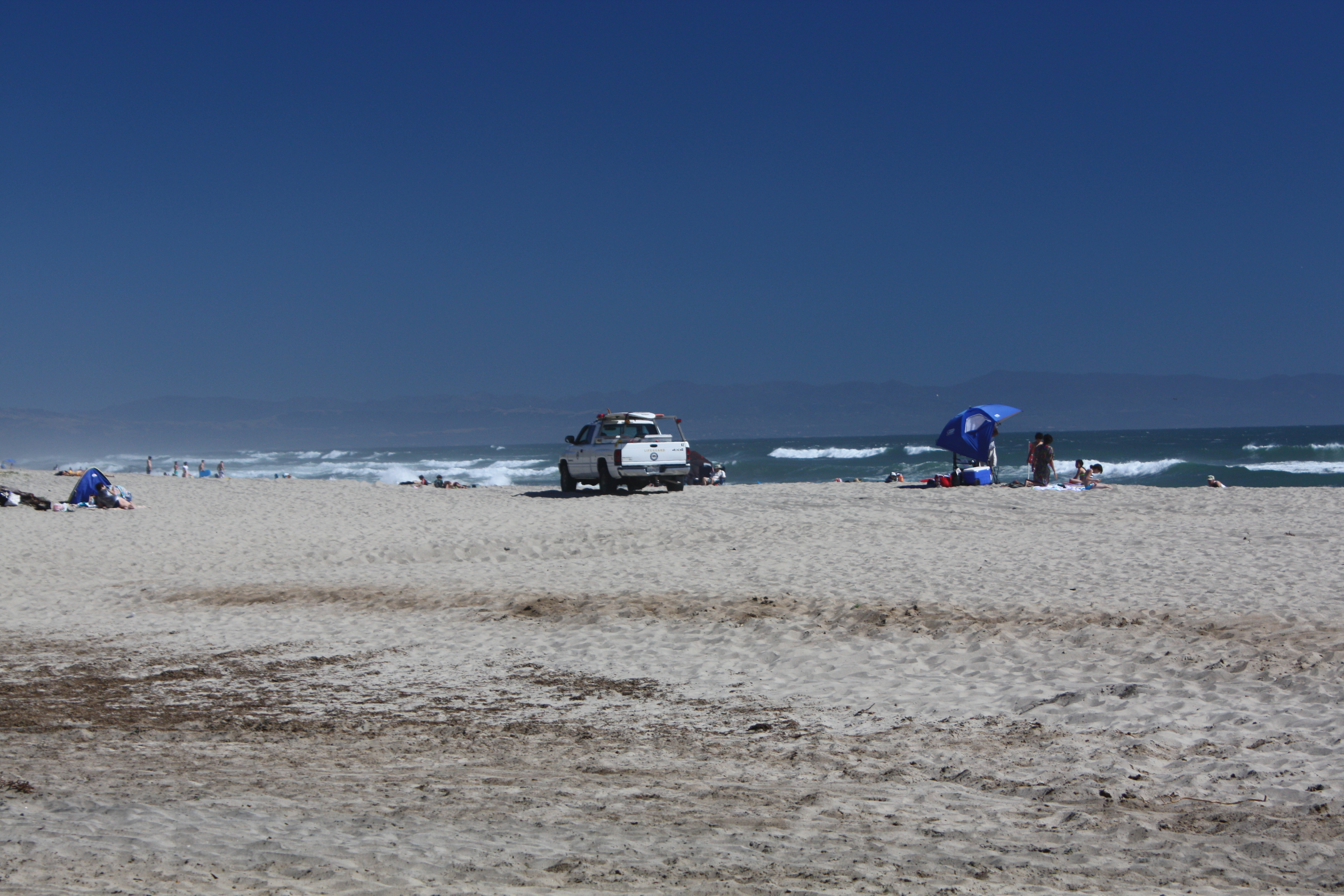 Manresa State Beach Sharks