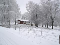 Svensås jul 2009