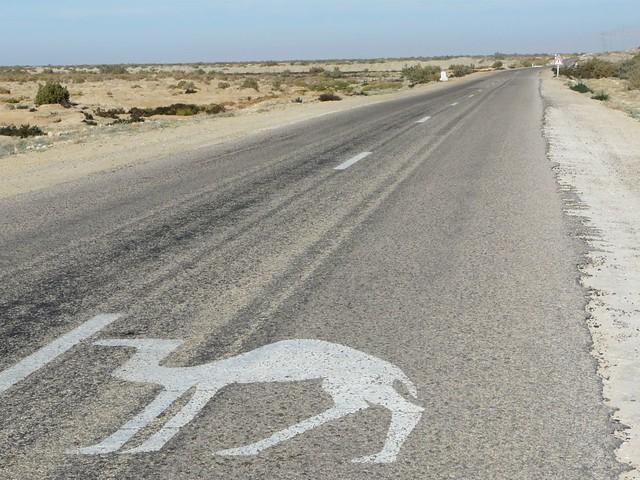 Carretera del sur de Túnez