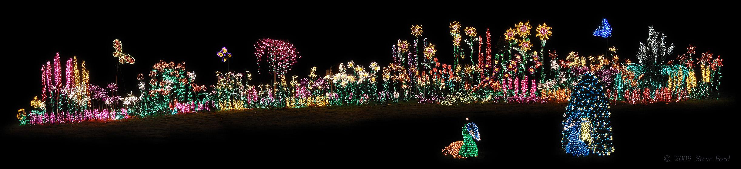 Bellevue Botanical Garden 2009 Light Show By Malamuteman Newsvine