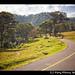 Guatemalan hills
