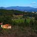 IMGP0128 Via Chiantigiana Verso Siena by mauropaolocascasi
