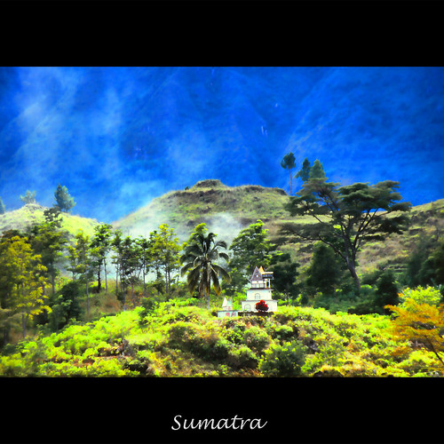 mist forest sumatra indonesia volcano 1988 jungle lush equatorial laketoba zedzap