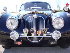 automobile, jaguar xk120, jaguar xk140, vehicle, antique car, classic car, vintage car, land vehicle, luxury vehicle,