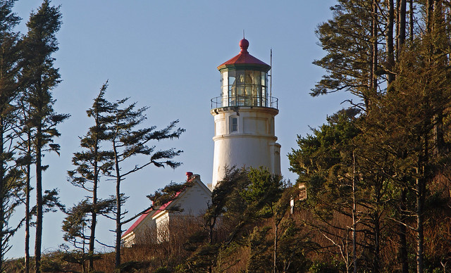 628 (2)Heceta Head Lighthouse-E. View 2
