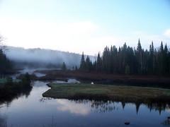 Lac bourque zec des nymphes