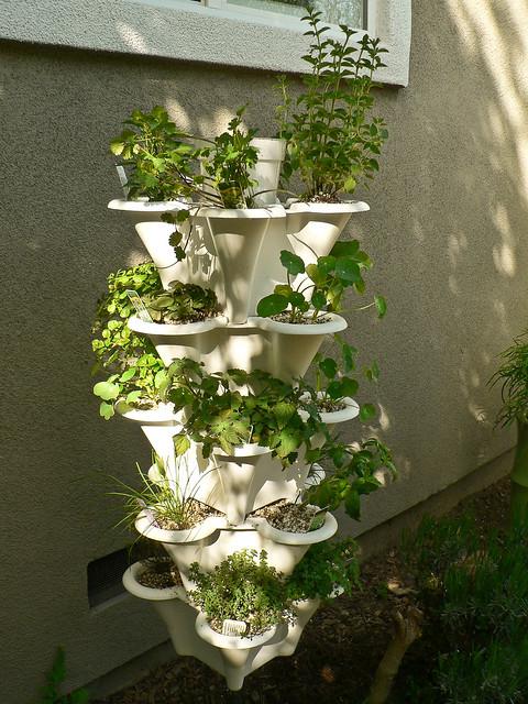 hydroponic herb garden flickr photo sharing. Black Bedroom Furniture Sets. Home Design Ideas