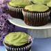 Vegan Avocado Cupcakes 3 by Kaitlin F