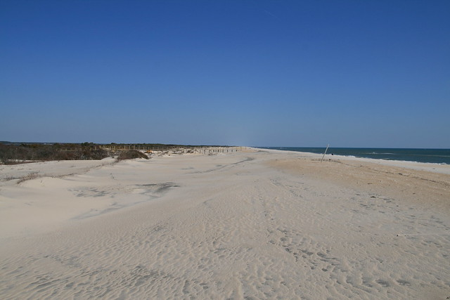 Assateague Island State Park Camping Reviews
