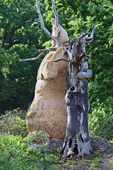 carving, art, chainsaw carving, leaf, wood, tree, sculpture, plant, trunk,