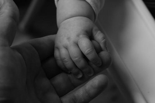 Parent and child. Image courtesy Steve Baty.