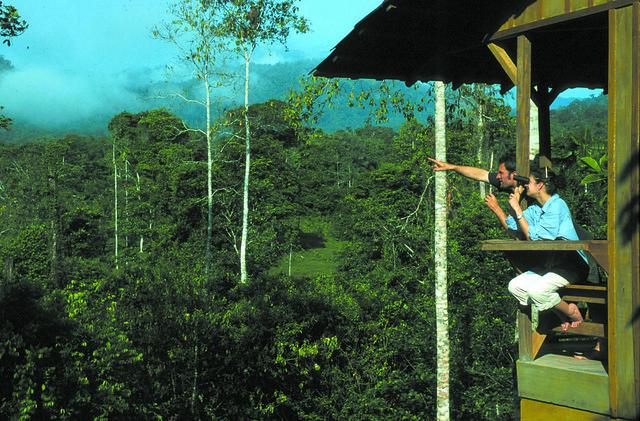 Watching some birds at Selva Bananito Eco Lodge
