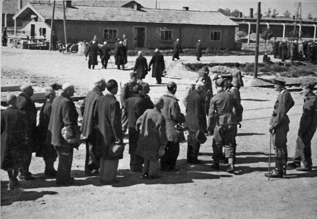 The selection process, Auschwitz, May 1944