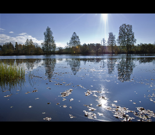 autumn trees reflection fall nature water grass leaves clouds reflections suomi finland landscape countryside pond colours afternoon explore flare 2010 sunflare