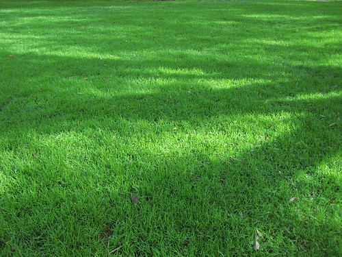 BBG Lawn