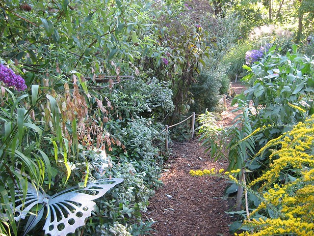 Kids navigate the narrow paths and hidden nooks in the Meadow, pictured here in fall. Photo by Ashley Gamell.