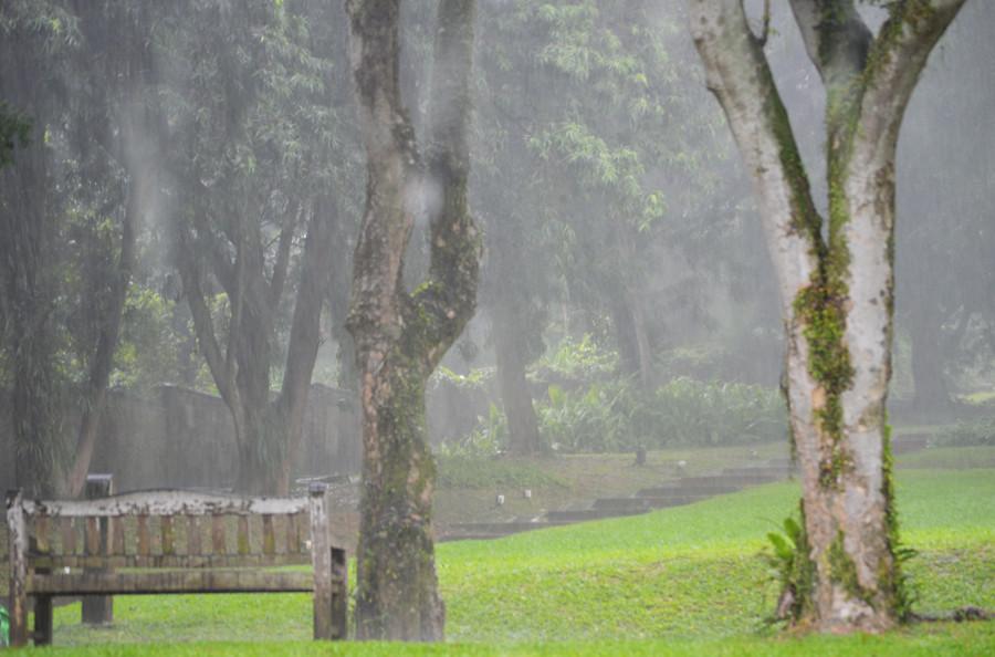 fort-canning-rain1