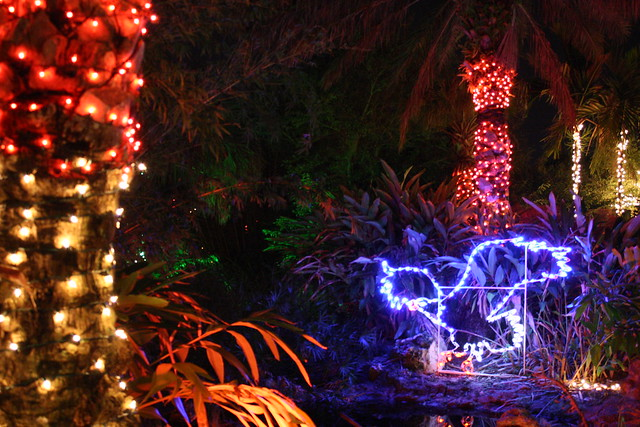 christmas lights florida botanical gardens flickr