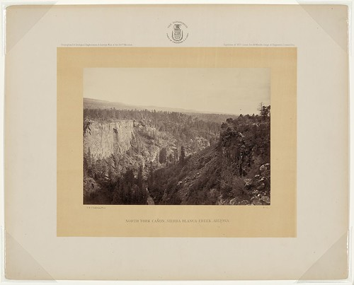 North Fork Cañon, Sierra Blanca Creek, Arizona (LOC)