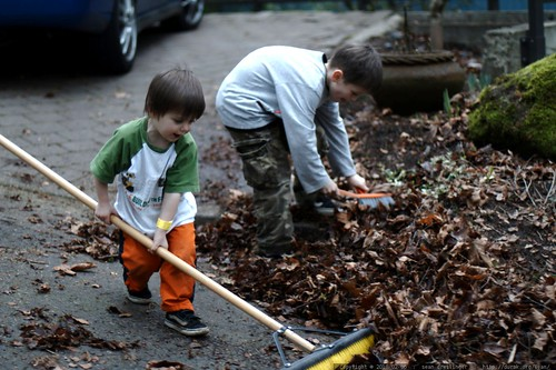 brothers sweeping up leaves