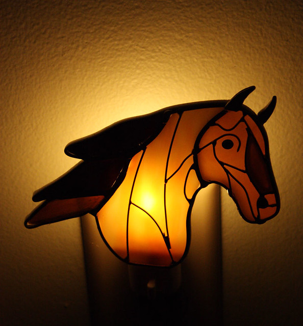 Horse night-light : Flickr - Photo Sharing!